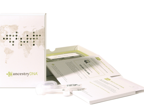Ancestry DNA Experience
